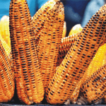 best ways to reheat corn on the cob