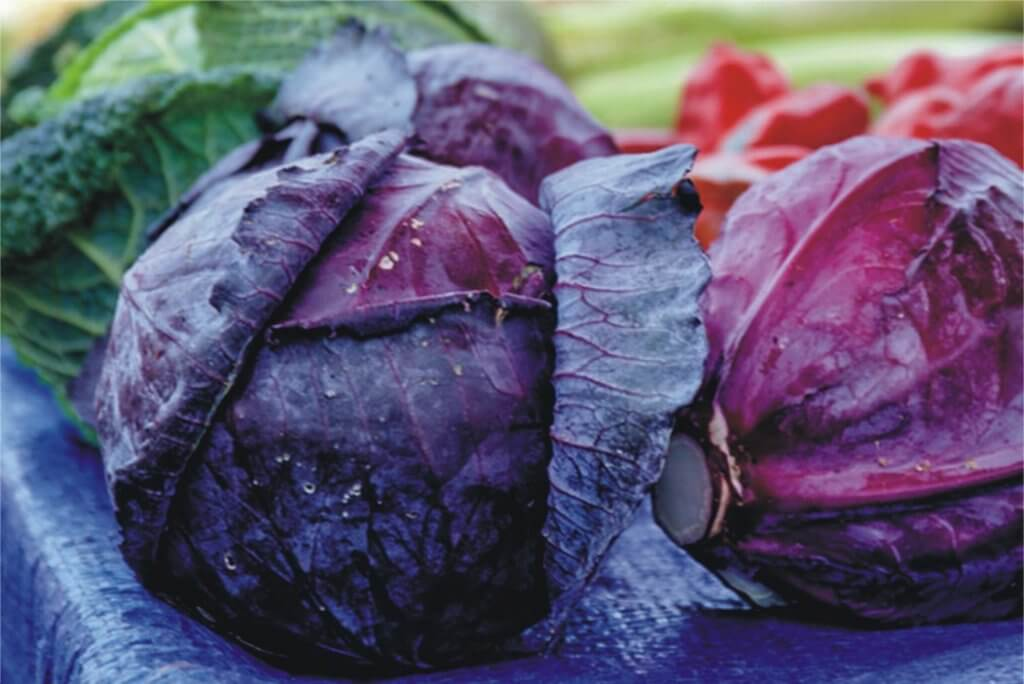 Freezing Red Cabbage